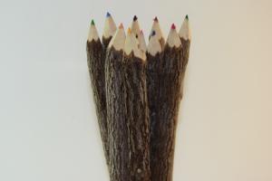 Farveblyanter-natur